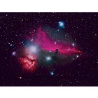 The Horsehead and Flame Nebulae at Orion Store